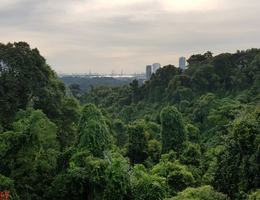 The Southern Ridges Singapore